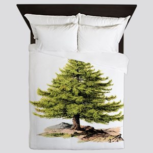 Vintage Pine Tree BM Queen Duvet